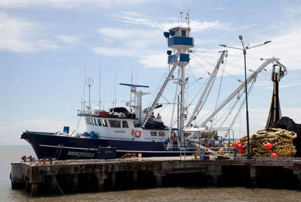 ebizor port services optmized